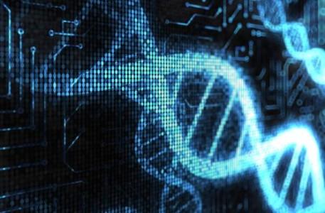 Биологические транзисторы, изготовленные из ДНК