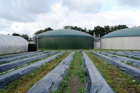 Биоэнергетика в России