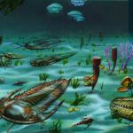 Получено объяснение быстрой эволюции организмов в кембрийском периоде