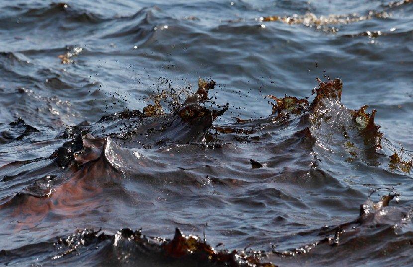 Картинки по запросу нефтяные загрязнения