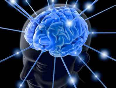 Реакции мозга