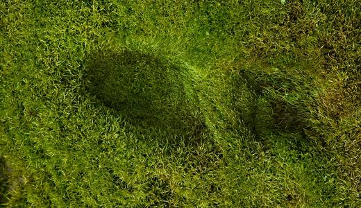 Пересмотр концепции экологического следа