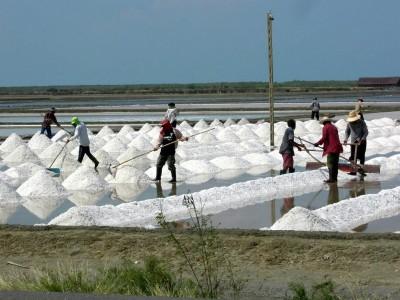 соляная ферма