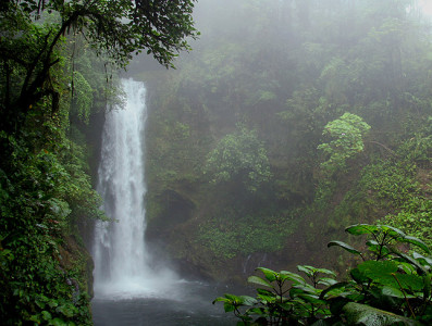 Жаркие и влажные места нашей планеты