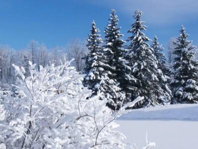 Какими станут зимы через пару лет?