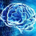 Новая компьютерная модель человеческого мозга Spaun