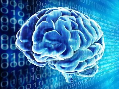 компьютерная модель мозга Spaun