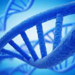 ДНК может хранить стихи, фотографии и речь