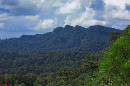 Национальный парк Ламбер Хиллс в Малайзии