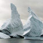 Обнаружена жизнь под глубоким антарктическим льдом