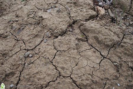 Недооцененные глинистые минералы