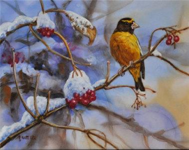 Птичий мир Сибири