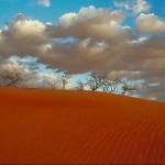 Путешествующий по Сахаре песок вызывает дождь в Калифорнии
