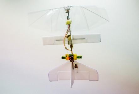 DelFly – робот-стрекоза, самостоятельно огибающий препятствия