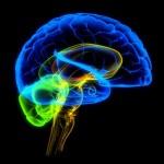 Молекулярная психиатрия -  как новый метод лечения психологических заболеваний